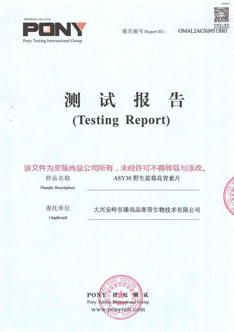 至臻尚品野生藍莓花青素片AYS30檢測報告04.jpg