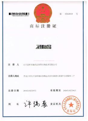 凯时k8国际真人版商标证书正面.jpg