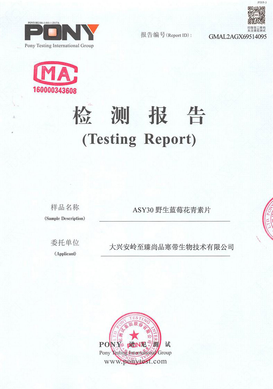 AYS30(ACT)藍莓花青素片營養成分檢測報告2020-(1).jpg