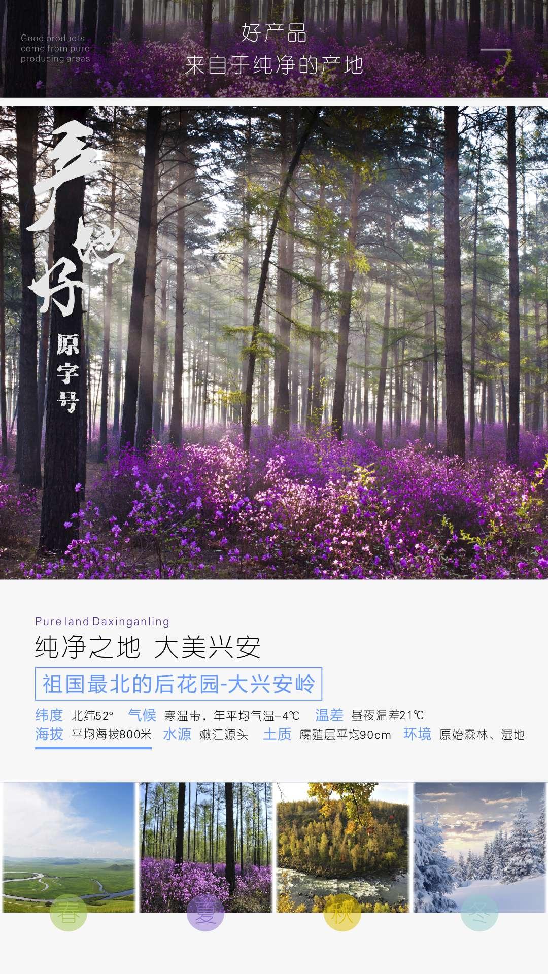 Z 至臻尚品-臻明眸藍莓花青素片-04.jpg