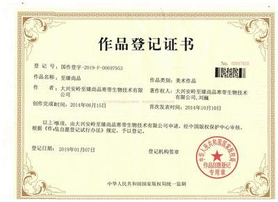 凯时k8国际真人版作品著作权证书.jpg