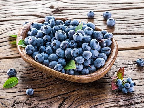 蓝莓图1.png
